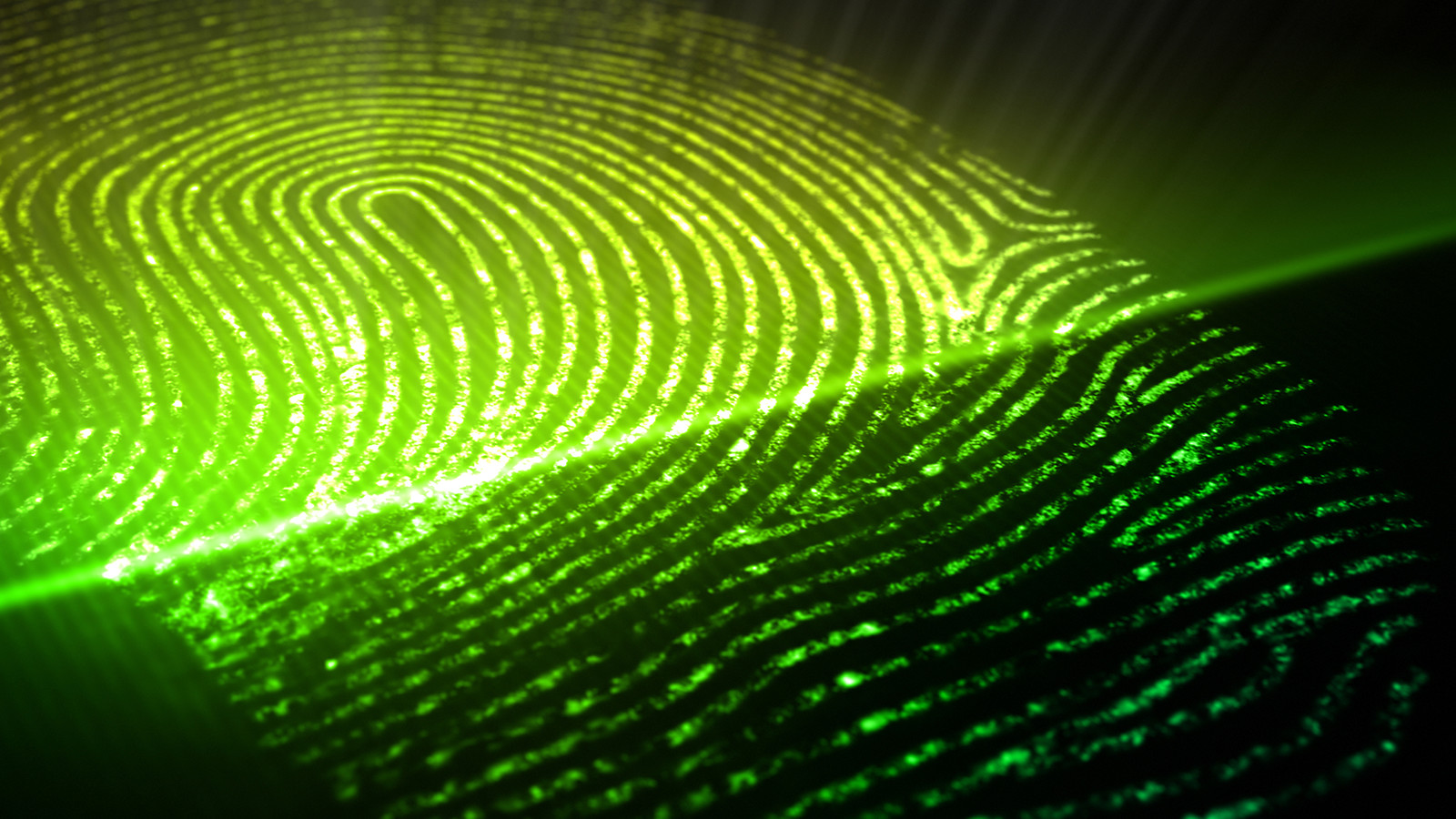 Cyber Defense   Visa